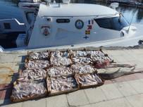 BALIK AVI - Trol tekneleriyle balık avlayanlara 20 bin lira ceza