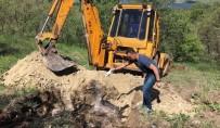ÖMER KÜÇÜK - Tunceli'de Telef Olan Hayvanlar Gömüldü