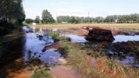 SEL FELAKETİ - Sakarya'da Tarım Arazileri Sular Altında Kaldı