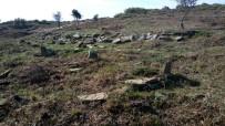 ASLANTEPE - Şehit Mezarları Gün Yüzüne Çıktı