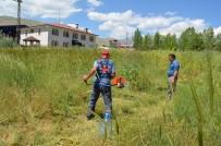 Adilcevaz'da Mezarlıklarda Ot Biçme Çalışması