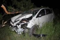 SOLMAZ - Doktorun Kullandığı Otomobil Ağaca Çarptı Açıklaması 4 Yaralı