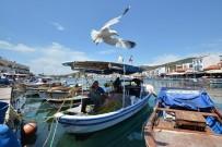 ÖDÜL TÖRENİ - Foça Belediyesi Deniz Öyküleri Ödülü'ne Başvurular Uzatıldı