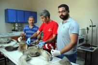 BALINA - Hatay'da Kıyıya Vuran Balinanın Kemikleri İncelemeye Alındı