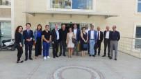 TİCARET ODASI - Hollanda Konsolosluk Temsilcileri Kuşadası Ticaret Odası'nı Ziyaret Etti