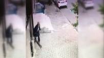 HAYVAN - Sokak Kedilerine Uygulanan Şiddet Kamerada