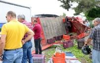 Tarım İşçilerini Taşıyan Kamyonet Kaza Yaptı: 3 Ölü, 5 Yaralı