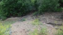 DOLU YAĞIŞI - Torul'da Dolu Yağışı Tarım Arazilerine Zarar Verdi