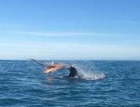 20 DAKİKA - 120 kiloluk fok balığını yendi