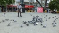 HAYVAN - Ramazanda Güvercinlere Yem Verenlerin Sayısı Arttı