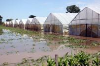 SAĞANAK YAĞIŞ - Sağanak Yağış Tarım Arazilerini Vurdu