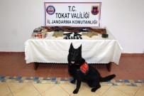 BİXİ - Tokat'ta Silah Kaçakçılarına Darbe