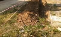 ZABITA MÜDÜRÜ - Abbaslık Yolundaki Hafriyat Atıkları Temizlendi