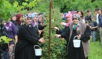 Ahududu Dalında Kaldı, Köylü Kadınlar İsyan Etti