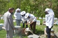 SONBAHAR - Çatak'ta Arıcılık Kursuna Büyük İlgi