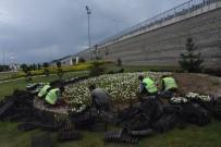 KALICI KONUTLAR - Düzce Belediyesi Kenti Çiçeklendirmeye Devam Ediyor
