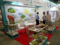 NAVIGASYON - Ege'nin Organik Ürünleri Amerika Pazarında Tanıtılacak