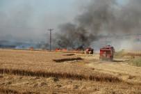 Ekili Alanda Yangın Çıktı