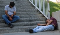 YAŞAR ÇELİK - Bonzai Krizine Giren Gençlerin Halleri Yürekleri Burktu