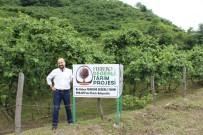 İLKBAHAR - Değerli Tarım Projesi Yaygınlaşıyor
