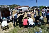 Kastamonu'da Trafik Kazası Açıklaması 1 Ölü, 5 Yaralı