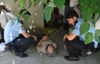 Zekiye Nine Polise Zor Anlar Yaşattı