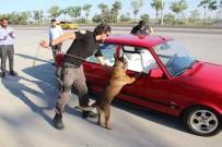 OTOBÜS TERMİNALİ - Narkotik Köpeği 'Oscar' Bayram Mesaisinde