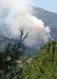 BALLıK - Sultanhisar'da Orman Yangını
