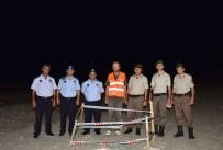 ZABıTA - Alanya'da Caretta Caretta Yuvası Koruma Altına Alındı