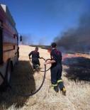 ELEKTRİK DİREĞİ - Anız Yangınında Ağaçlar Ve Elektrik Direkleri Yandı