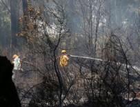 POLİS - Antalya'da orman yangını
