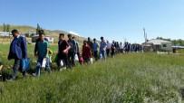 AYRANCıLAR - Bu Mahallede, 7'Den 70'E Herkes Şeker Topluyor