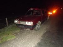Daday'da Otomobilin Çarptığı At Telef Oldu