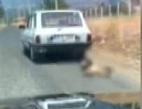 Köpeği arabanın arkasında saatlerce sürükledi
