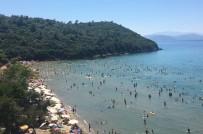 GÖÇMEN KUŞLAR - Milli Parkta Ziyaretçi Rekoru Kırıldı