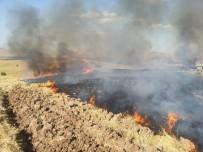 SIIRT BELEDIYESI - Siirt'te Anız Yangını