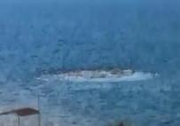 ARTÇI DEPREM - Ayvacık'ta Denizde Korkutan Görüntü