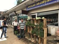 SONBAHAR - Balıkçılık Bitti, Fide Satışı Başladı