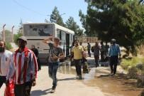 SINIR KAPISI - Bayramı Ülkelerinde Geçiren Suriyeliler Türkiye'ye Dönmeye Başladı