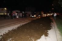 KALICI KONUTLAR - CHP'lilerin önüne tezek dökenlere 3 bin Lira ceza