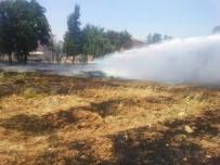 BÜYÜKŞEHİR BELEDİYESİ - Mardin'de Ağaçlık Alanda Yangın