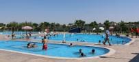YÜZME KURSU - Büyükşehirden 5 Yıldız Konforunda Yüzme Havuzları