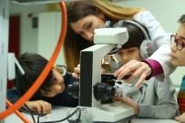 İAÜ'de Yaz Okulu Başlıyor