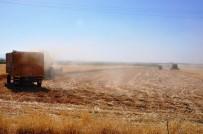 Sıcak, Çiftçiye Yangın Nöbeti Tutturuyor