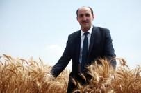 ANIZ YANGINI - Çiftçilere 'Anız Yakmayın' Uyarısı