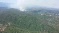 ORMAN İŞÇİSİ - Hatay'da Orman Yangını