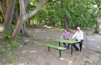 YENIKÖY - Karacabey Sahilleri Yaz Turizmine Hazır
