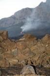 MUSTAFA HARPUTLU - Antalya'daki Orman Yangınını Söndürme Çalışmaları Devam Ediyor