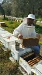 BALLıK - Aşırı Sıcaklara Karşı Arıları Koruyun