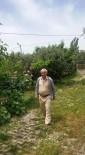 MEHMET KARATAŞ - Feci Traktör Kazası Açıklaması 2 Ölü 1 Yaralı
